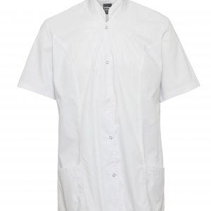 מקטורן שף פרינסס המלביש בגדי טבחים